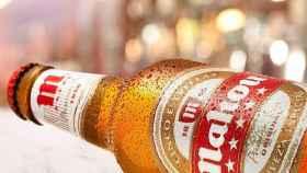 Una cerveza de Mahou.