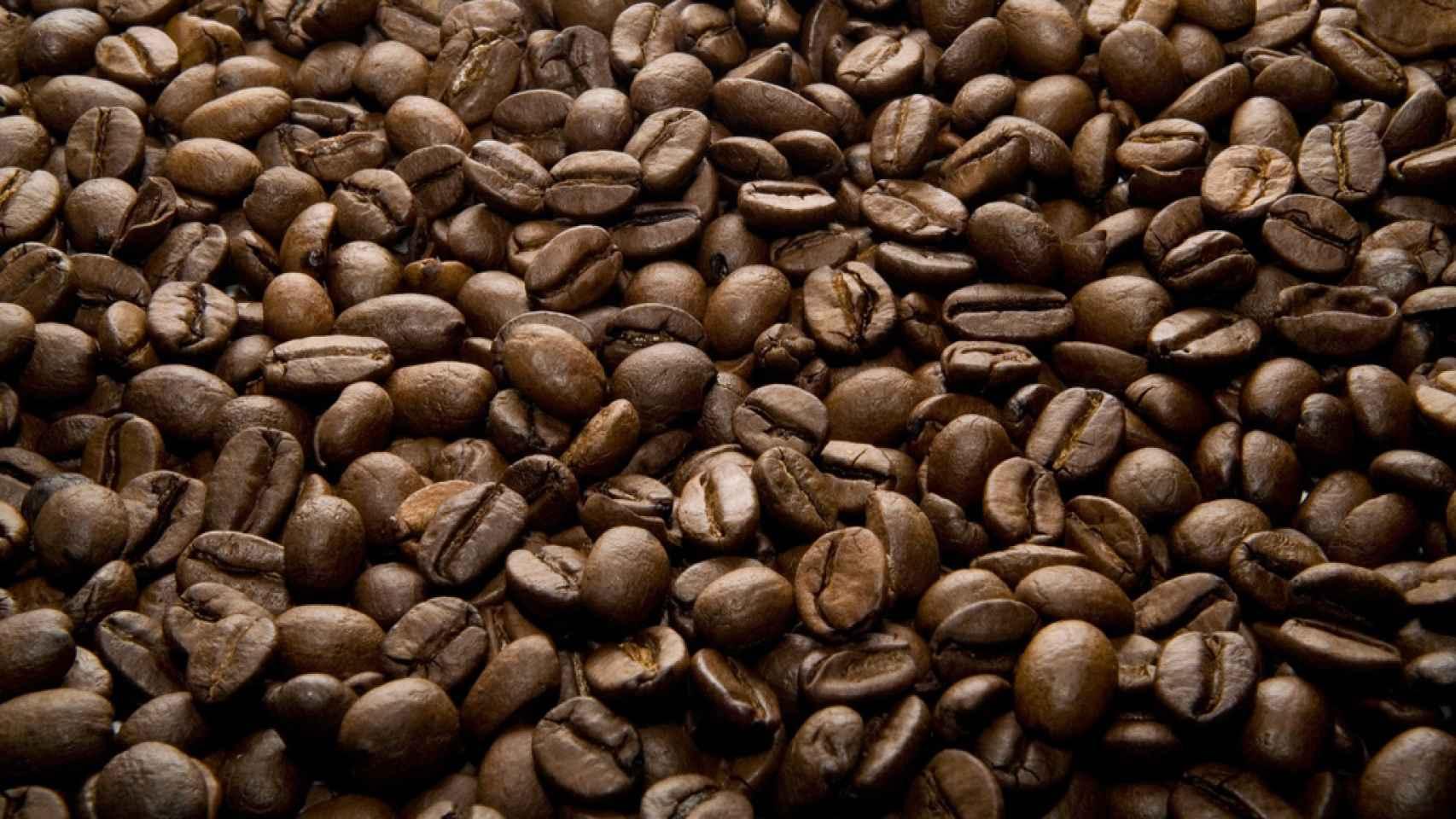 cafe-semillas-01
