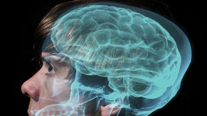 proyecto_cerebro_humano