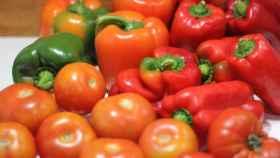 Tomates y pimientos