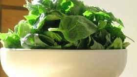 Las hojas de espinacas son un buen alimento para tomar ácido fólico.
