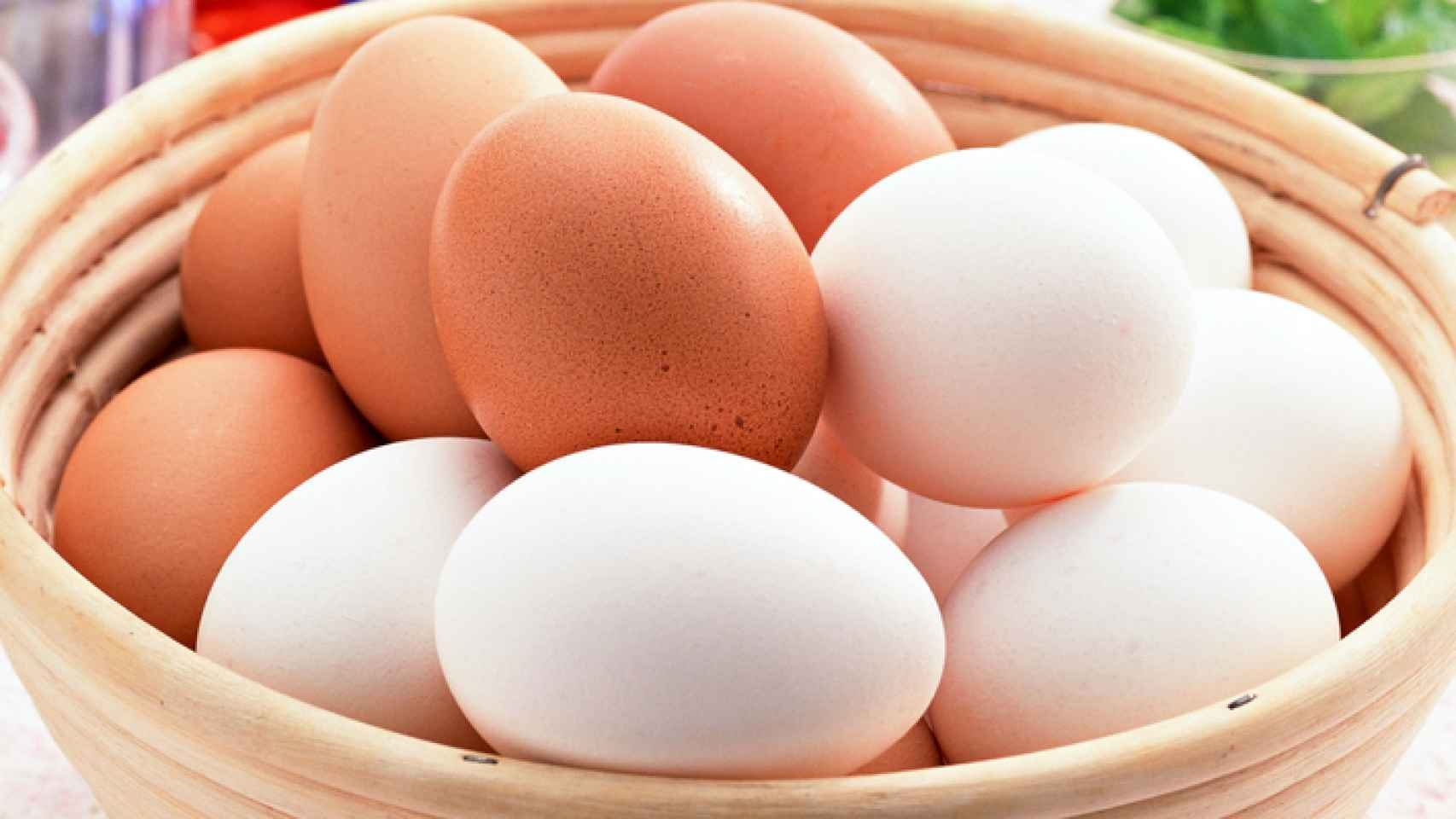 huevos blancos marrones