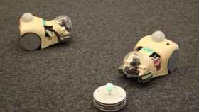 ratones_robot