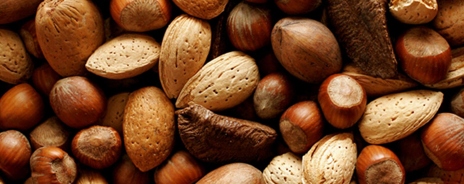 frutos-secos-boren