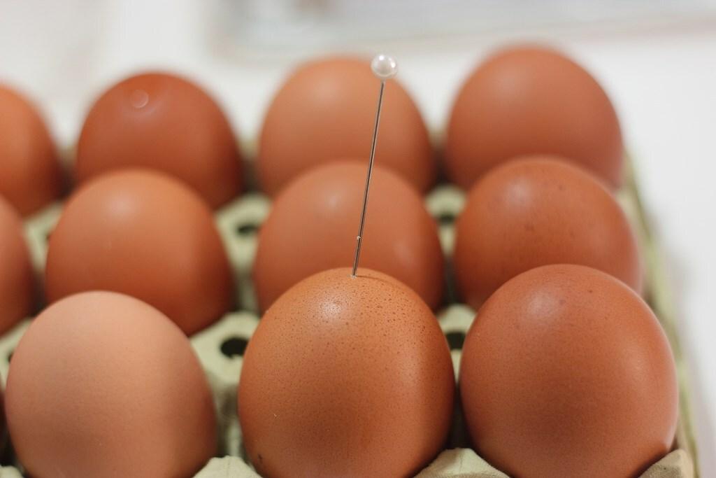 Pinchamos los huevos