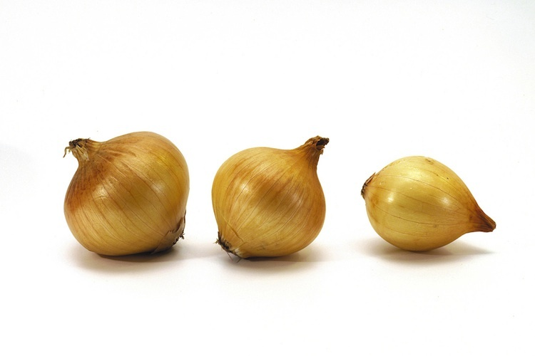 cebolla-amarilla