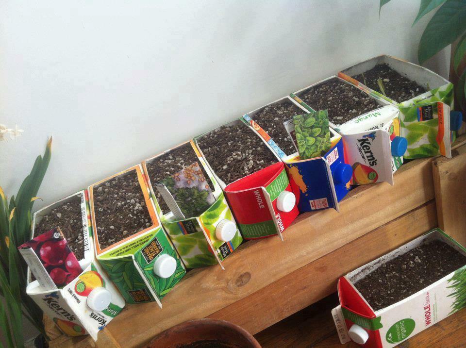 semilleros-tetrabrick