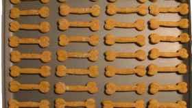 galletas-perros-0