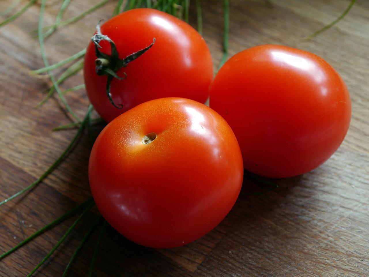 tomate-daniela