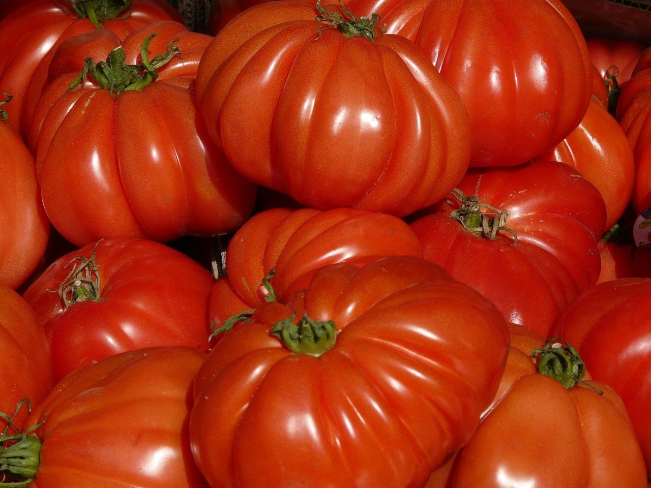 tomate-corazon-buey