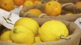 limon-00