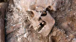 Un cráneo, con un tiro en la sien, en una fosa común en la provincia de Burgos.