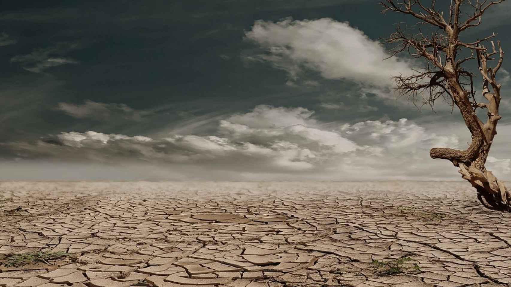 Este año en España termina más cálido y seco.