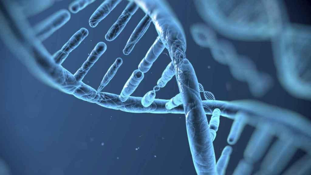 gene adn