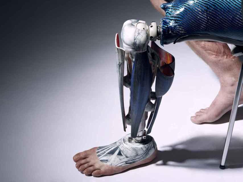 Una pierna anatómica.
