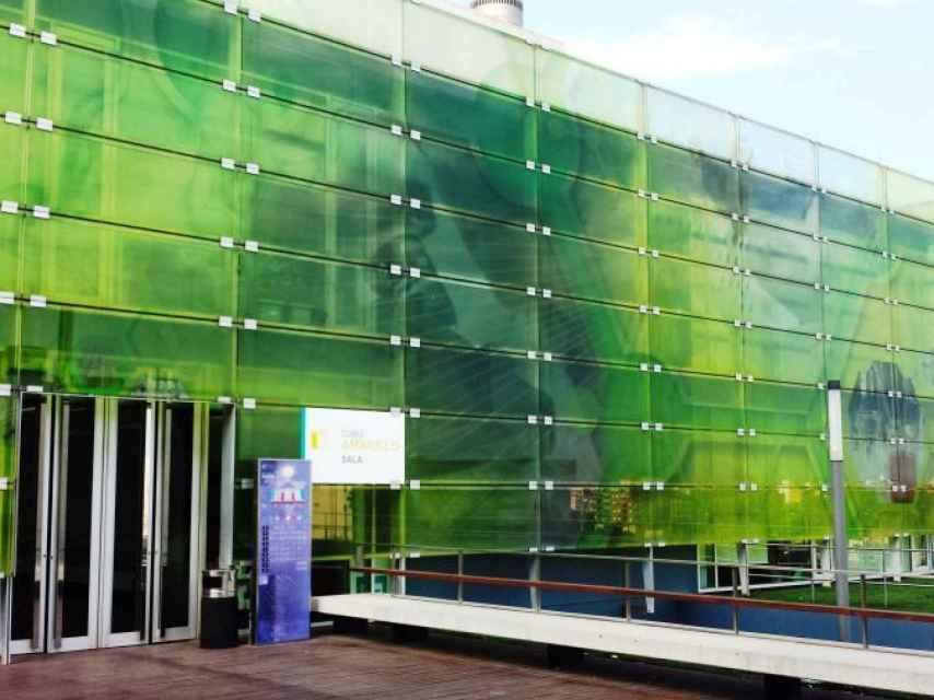 Instituto de Biología Molecular y Celular de Plantas (IBMCP-CSIC)