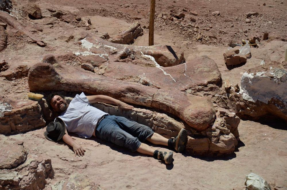hueso-titanosaurio