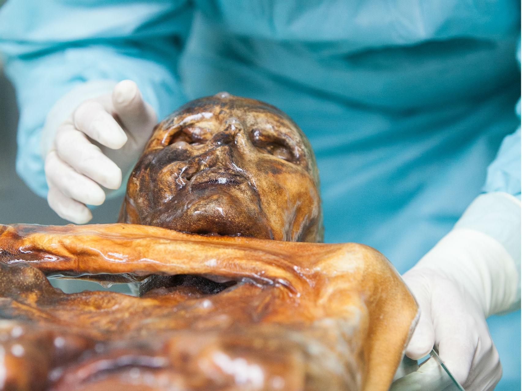 La momia de Ötzi, el hombre del hielo, también tiene valiosos microbios.