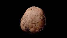 foto-patata-1-millon
