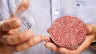 La carne del futuro será de laboratorio