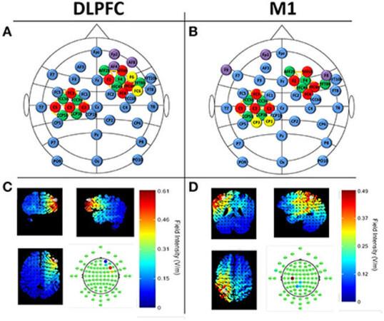 ondas cerebrales simulacion 2