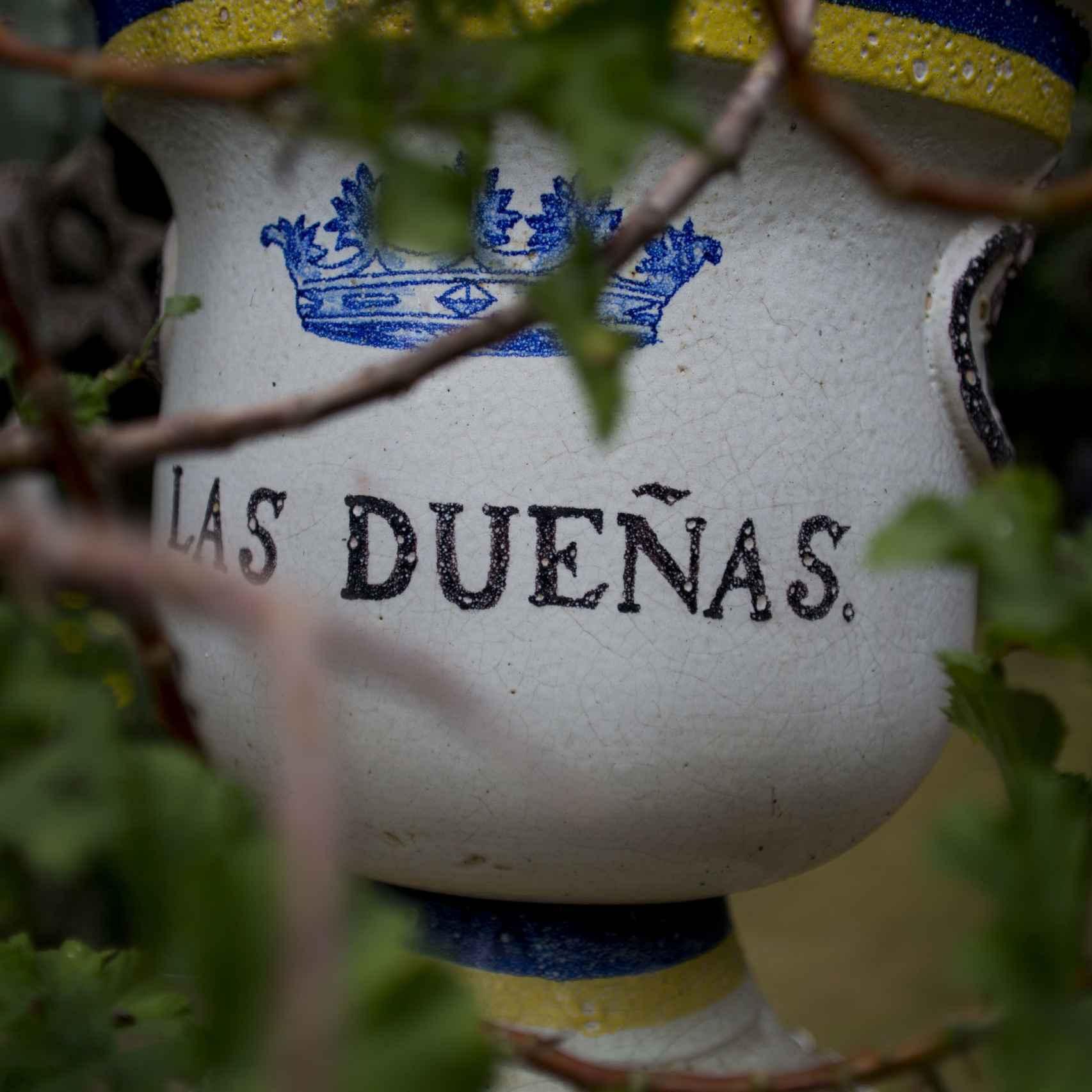 Palacio de Dueñas -FR- 01