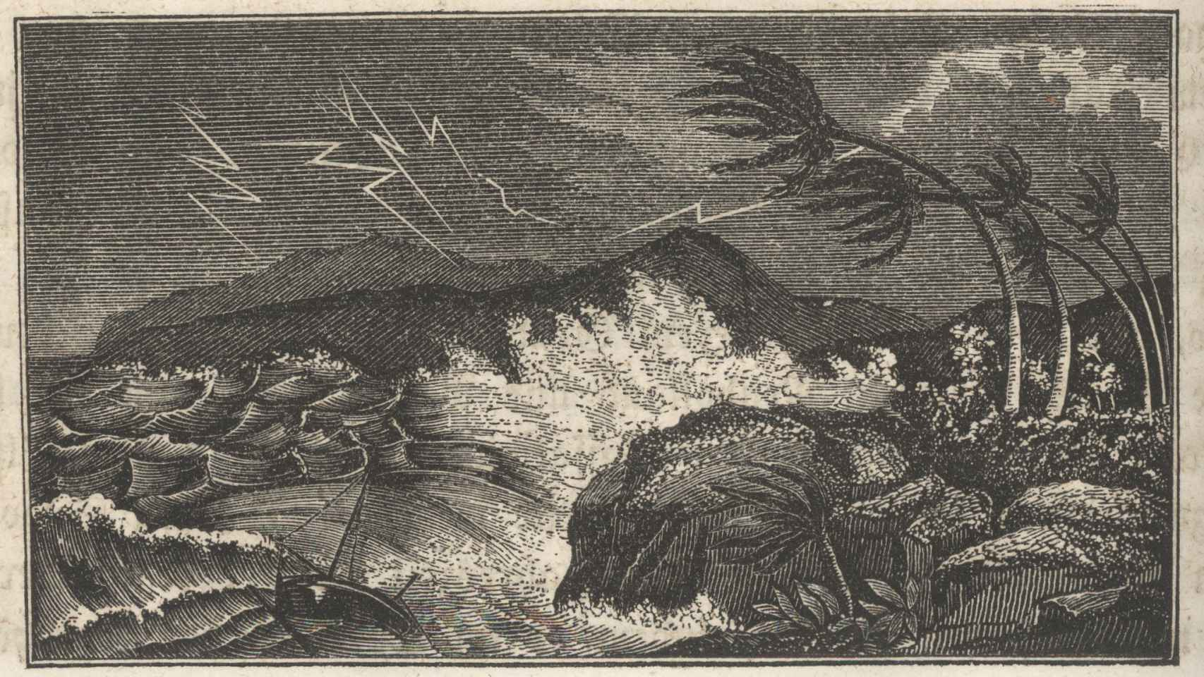 El cuadro Naturwunder Im Reiche der Luft, de  W.F.M. Zimmerman.