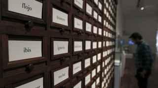 Los archivos de la RAE expuestos en la BNE