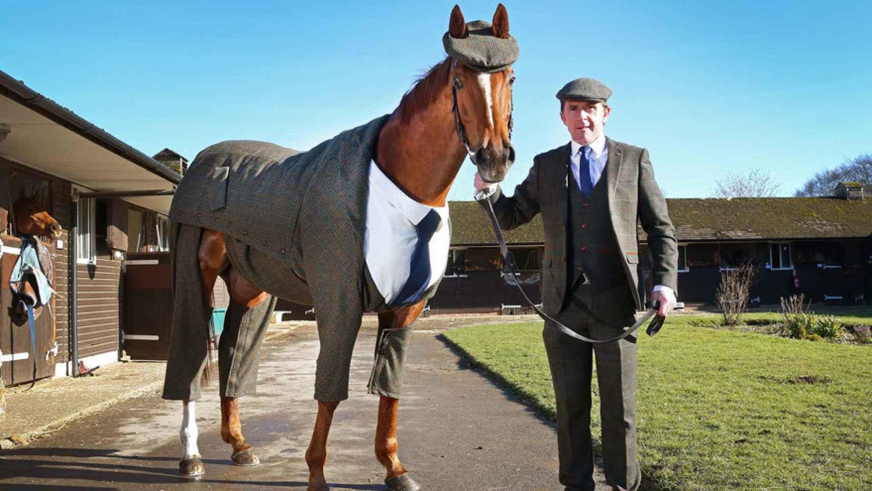 Tony McCoy con el primer caballo del mundo vestido de traje