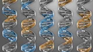 Un chasis genético para crear vida artificial en el laboratorio