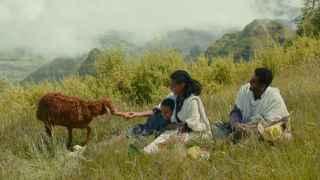 Fotograma de la película etíope Lamb.
