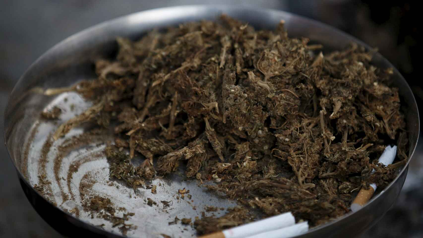 Un plato de marihuana en el festival Shivaratri de la India.