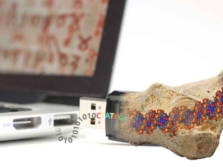 Los investigadores se inspiran en los fósiles a la hora de almacenar datos.