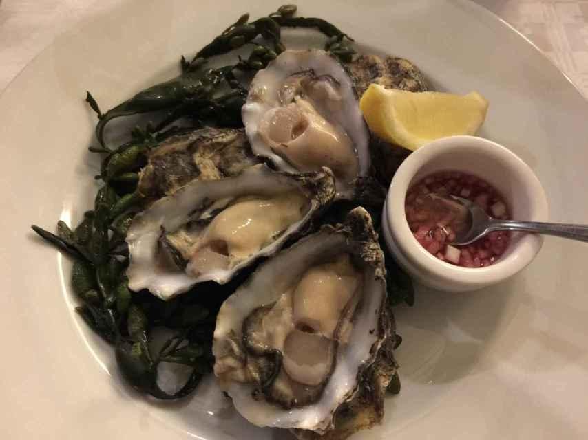 Las ostras.