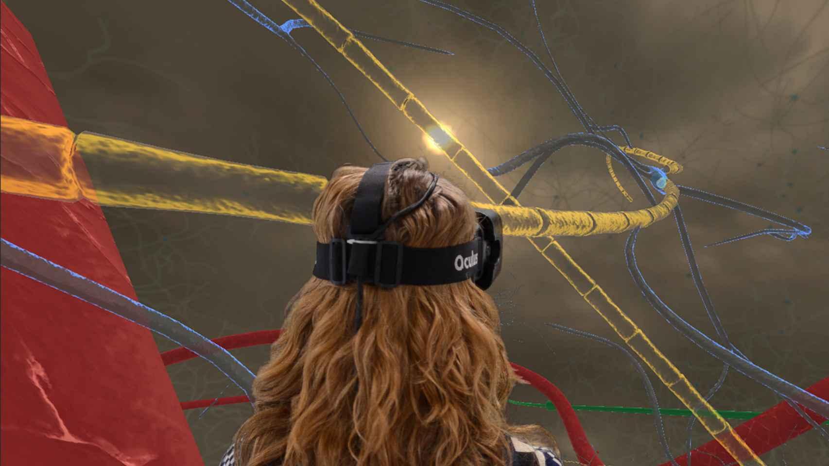 Los nuevos casos de VR son más asequibles y ello ayuda a la investigación.