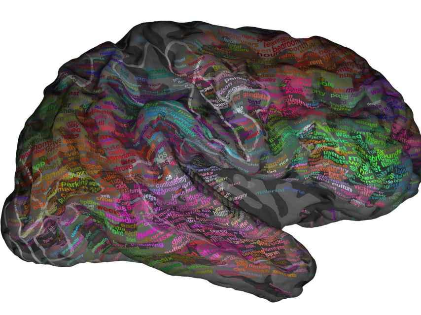 El atlas semántico elaborado por los investigadores.