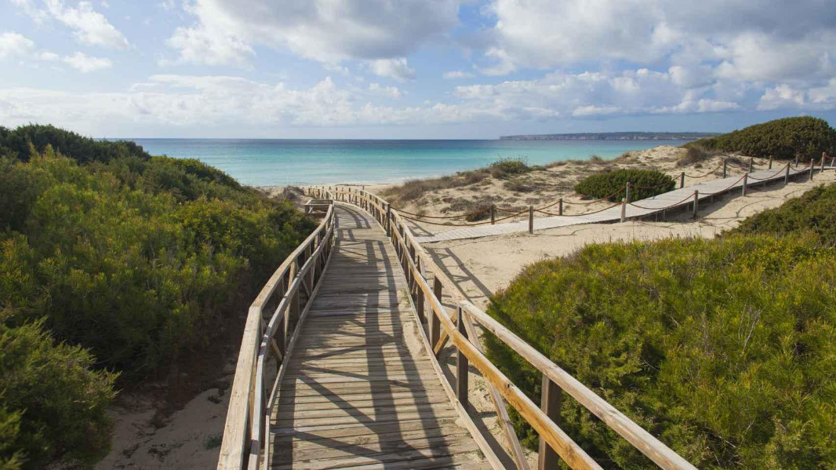 Una de las playas de la menor de las islas Pitiusas.