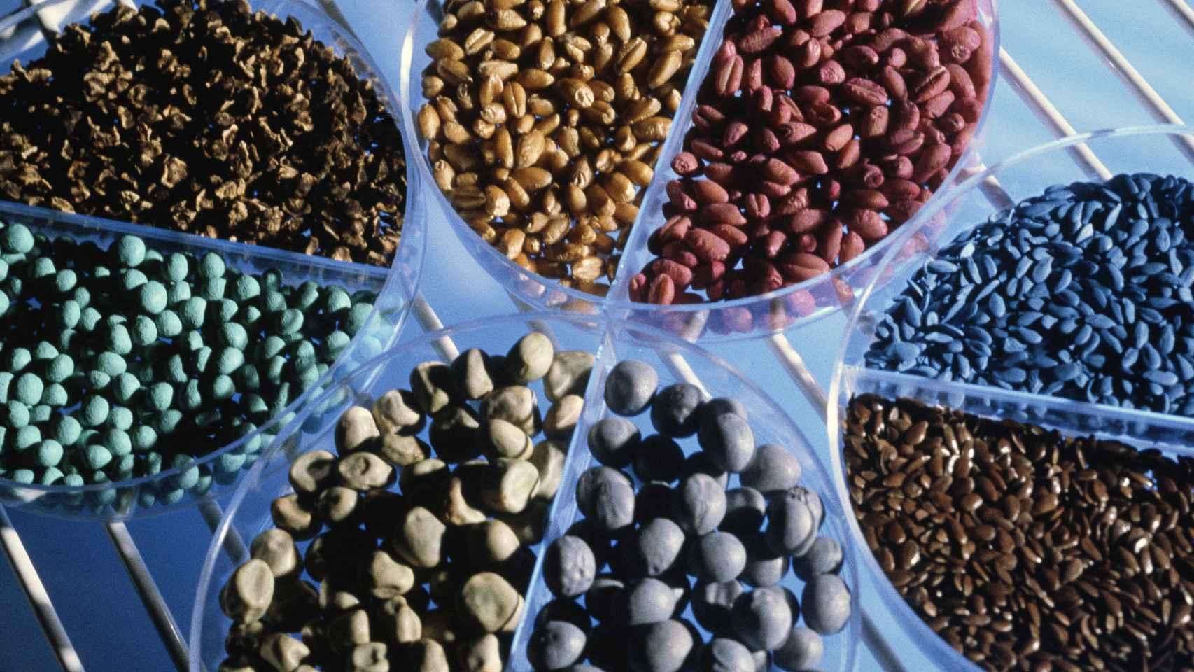 Semillas de productos desarrollados por Bayer.