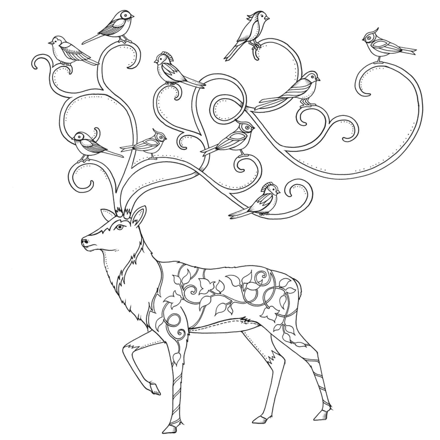 Ilustración para colorear de El bosque encantado.