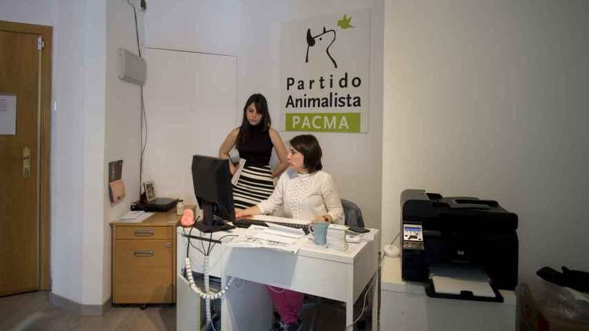 Sede del partido animalista Pacma.