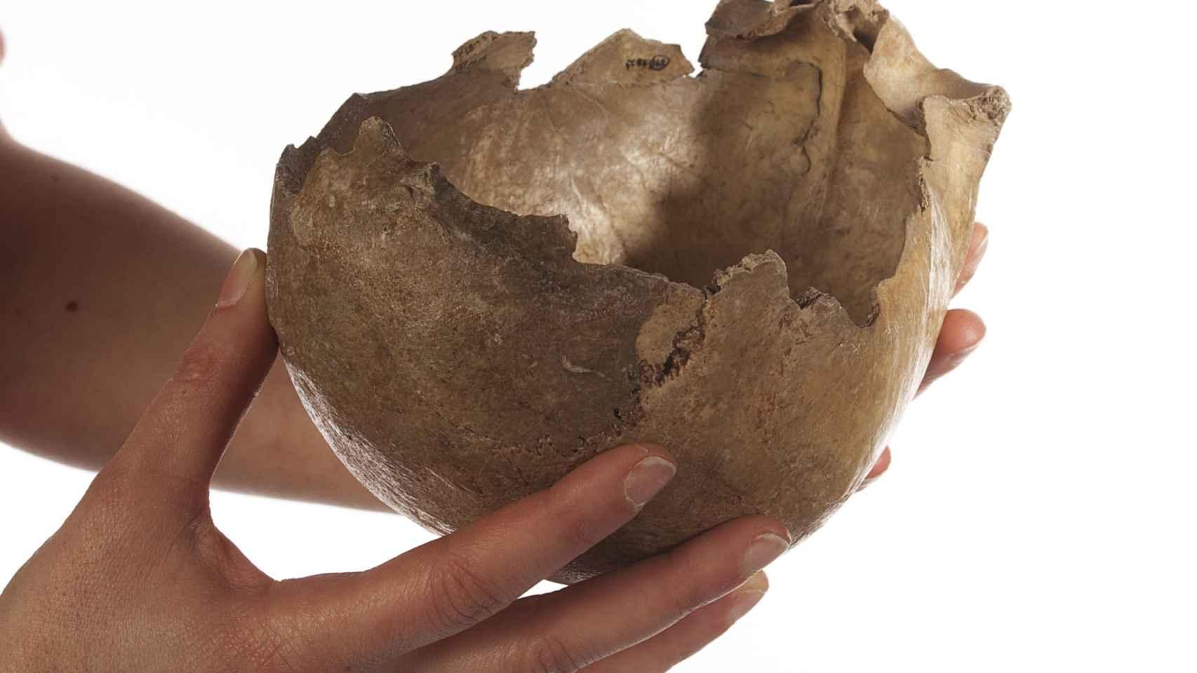 Copa-cráneo de la cueva de Gough