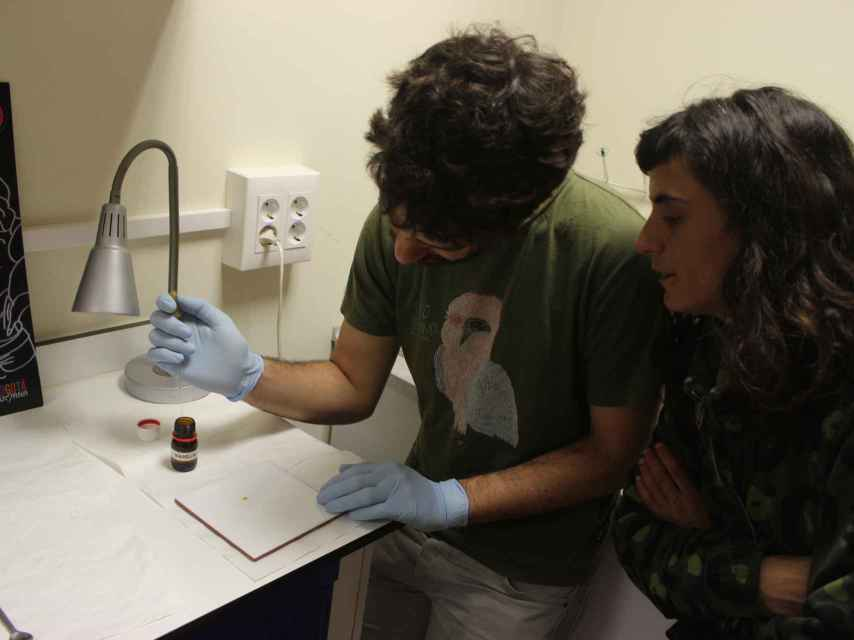 La muestra fue analaizada en el laboratorio de Energy Control