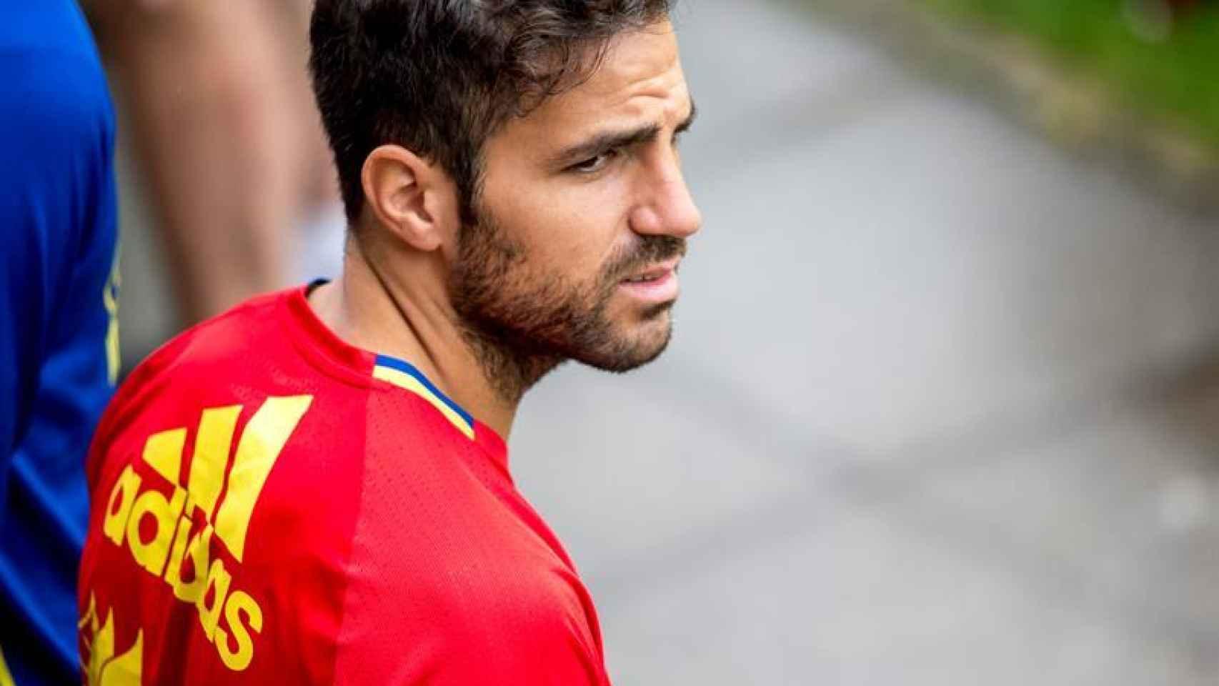 Cesc Fàbregas, concentrado con la selección.