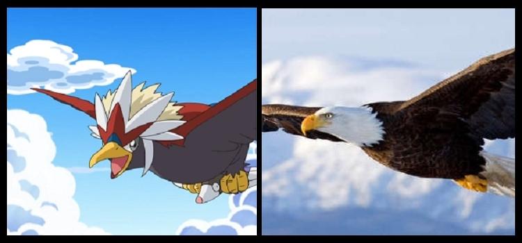 9 Águilas (2)