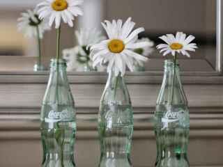 DETALLE ROMÁNTICO. Incluso las botellas de refrescos se convierten en auténticas creaciones de los más decorativas.