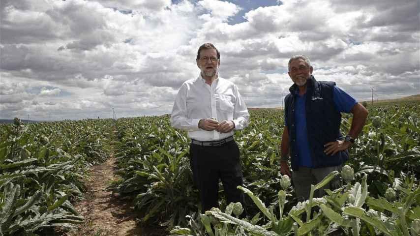 Mariano Rajoy, durante la visita que realizó el miércoles a la finca de cultivo de alcachofas Castel Ruiz.