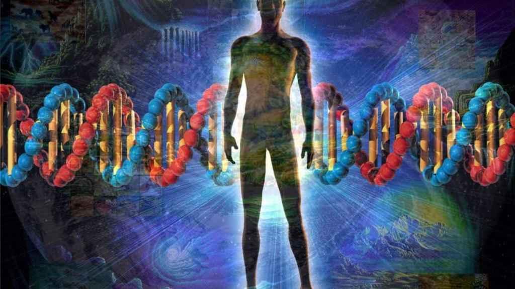 evolución genes