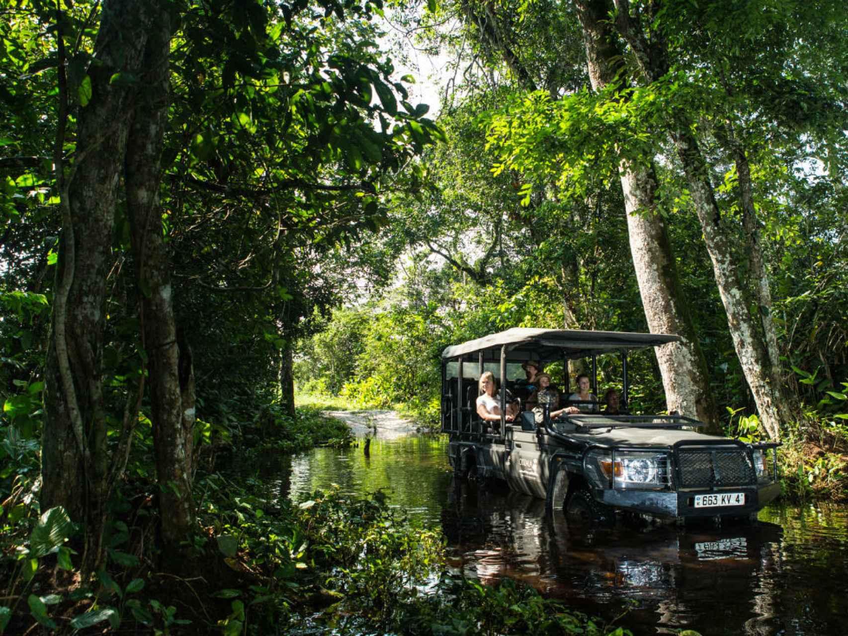 De safari por el Congo.
