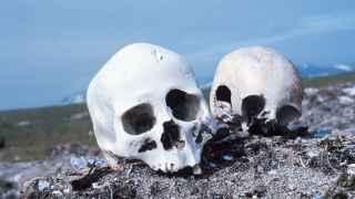 ¿Qué alternativas hay al entierro y la cremación, que no sea abandonar los cuerpos sin más?
