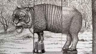 Timaronte, una ilustración del Animalario universal del profesor Revillod de José Saez Castán.